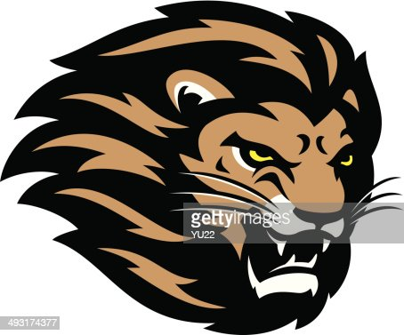 lion head vector art | getty images