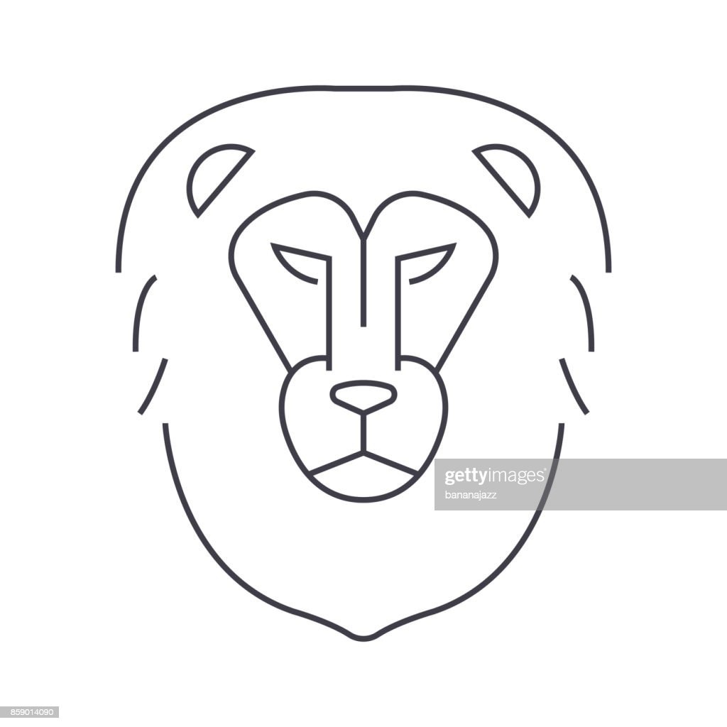 lion head vector line icon, sign, illustration on background, editable strokes