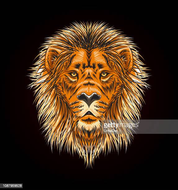 lion head with mane - vector sketch style illustration - animal mane stock illustrations, clip art, cartoons, & icons