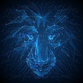Lion low poly blue vector illustration