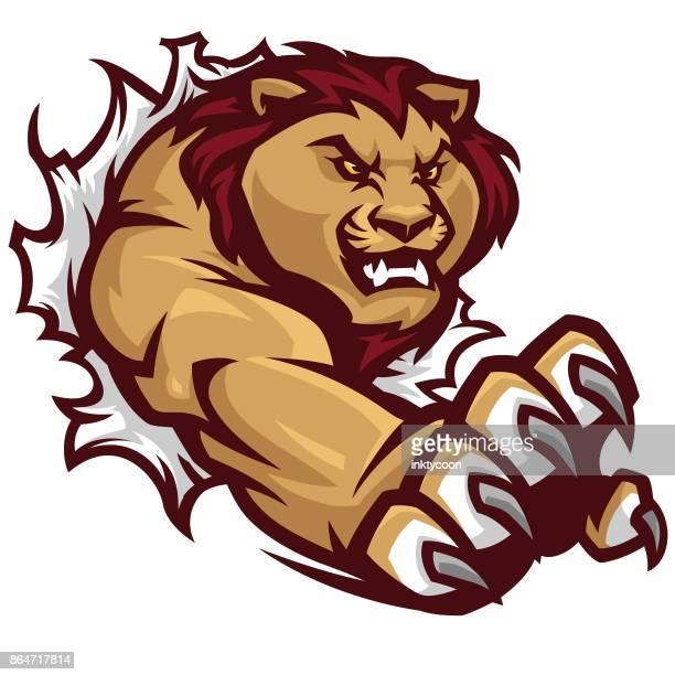 lion tear sport kit - animal track stock illustrations, clip art, cartoons, & icons