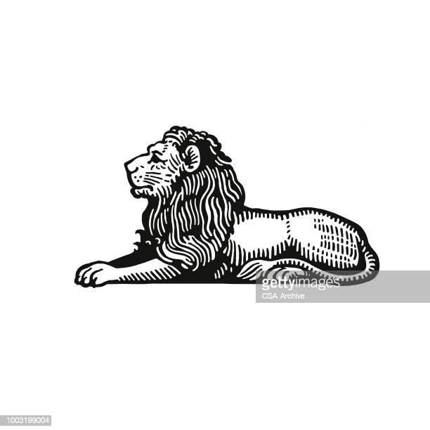 lion - löwe stock-grafiken, -clipart, -cartoons und -symbole