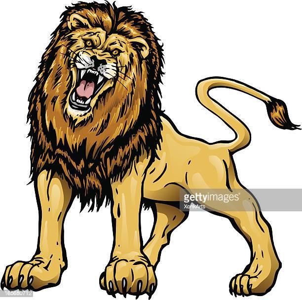 lion - animal mane stock illustrations, clip art, cartoons, & icons