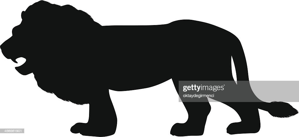 Lion : stock illustration