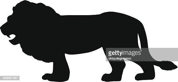 lion - animal body stock illustrations, clip art, cartoons, & icons