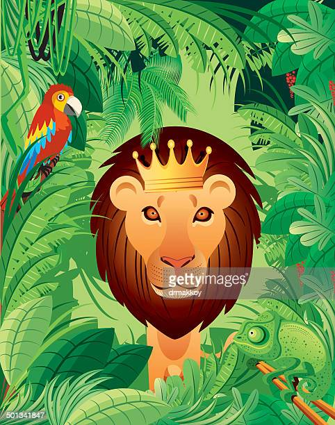 lion - king royal person stock illustrations, clip art, cartoons, & icons