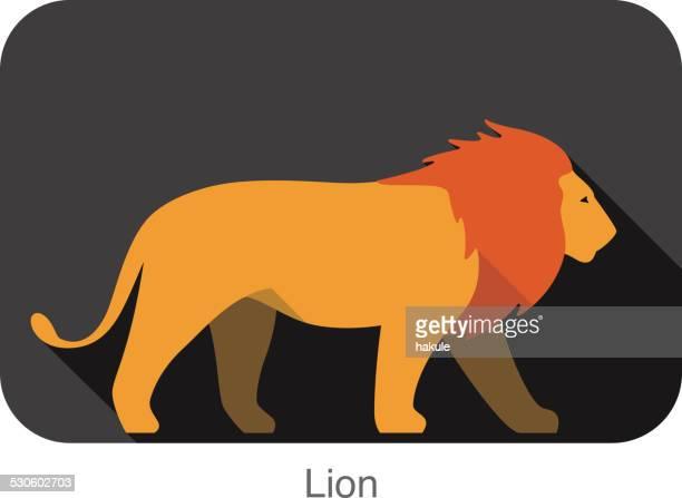 lion walking, flat clipart, vector illustration - animal body stock illustrations