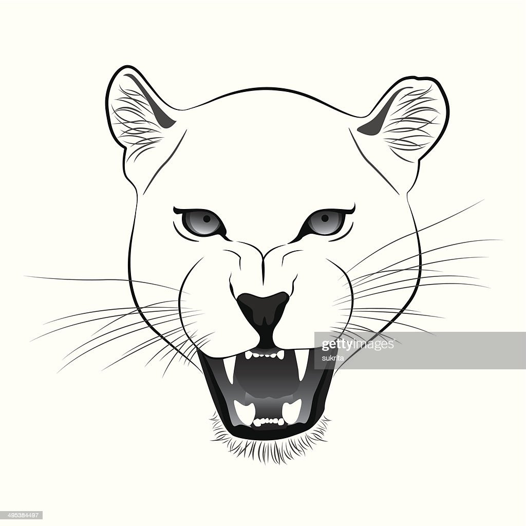 Lioness Vector Cartoon
