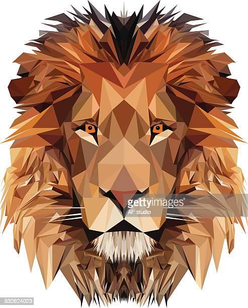 ilustrações, clipart, desenhos animados e ícones de lion's head - animal mane