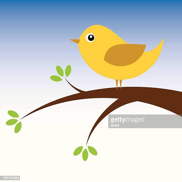 little bird in a tree - animal limb stock illustrations, clip art, cartoons, & icons