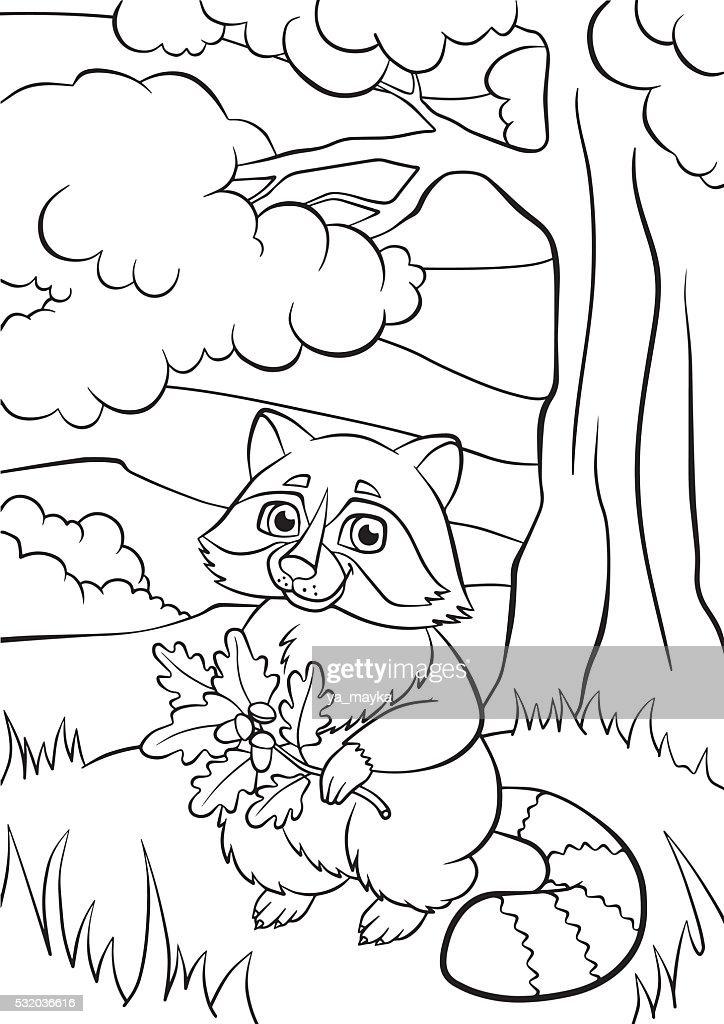 Little cute raccoon holds oak twig in the hands.