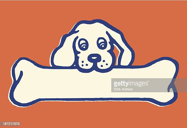 little dog, big bone - dog bone stock illustrations