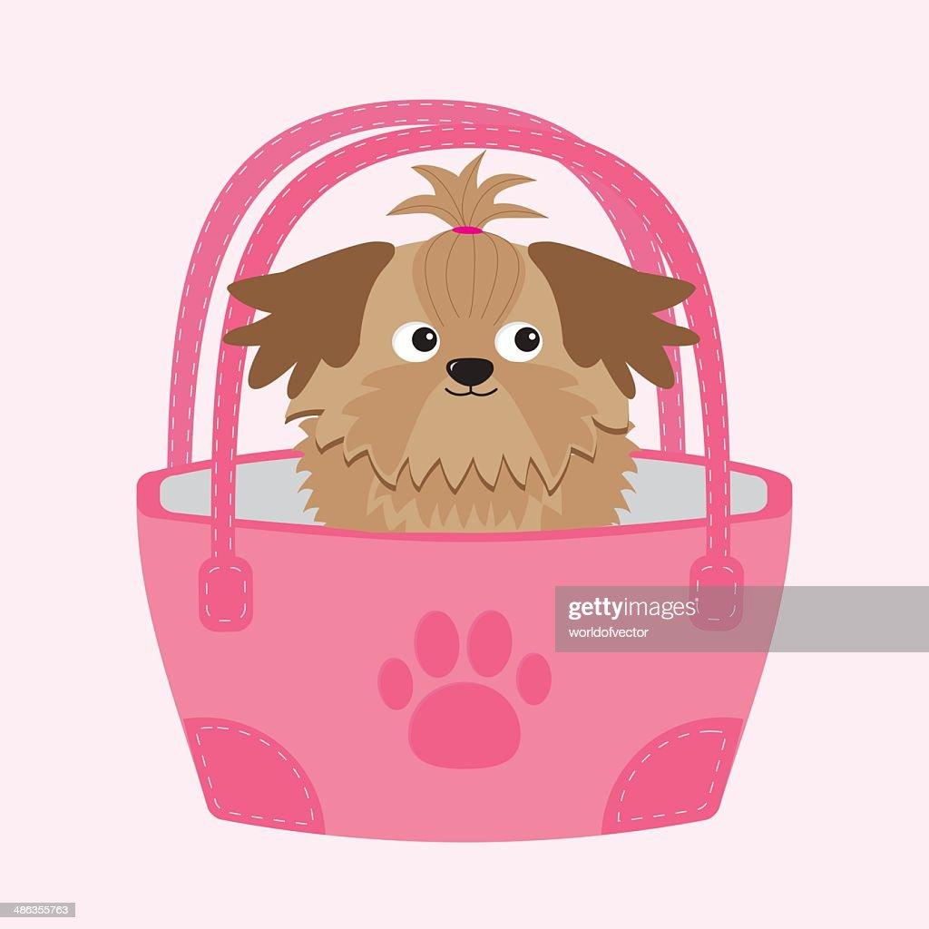 Little glamour tan Shih Tzu dog in the bag.