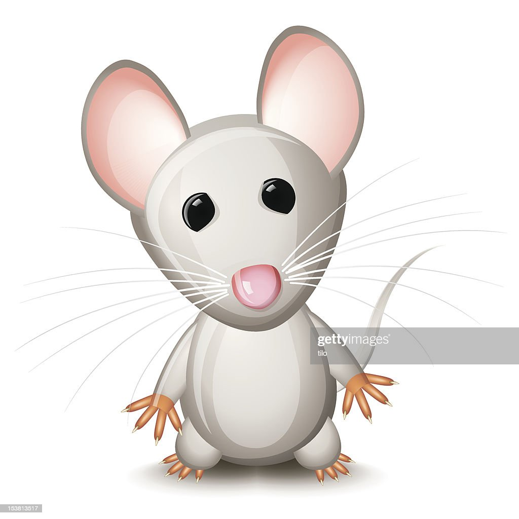 Little gray mouse