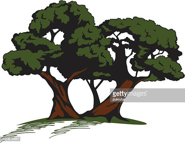 little grove of trees - grove stock illustrations, clip art, cartoons, & icons
