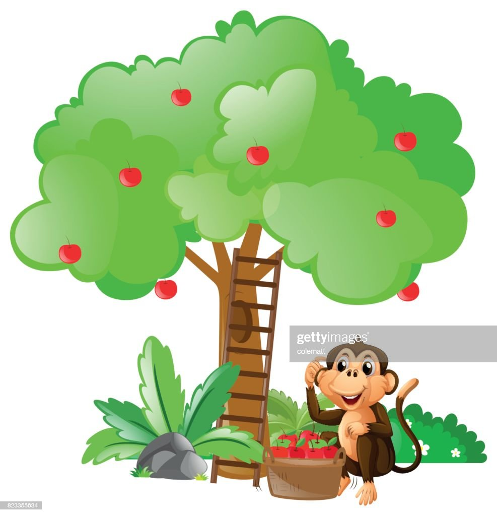 Little monkey sitting under apple tree
