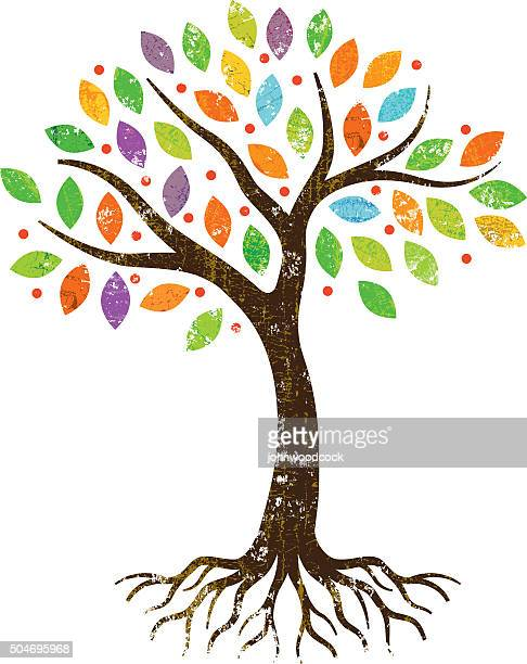 little park tree with roots. - tree stock illustrations, clip art, cartoons, & icons