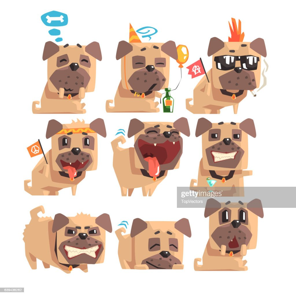 Little Pet Pug Dog Puppy With Collar Collection Of