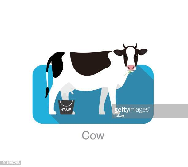 livestock, farm animal icon, vector illustration - cow stock illustrations
