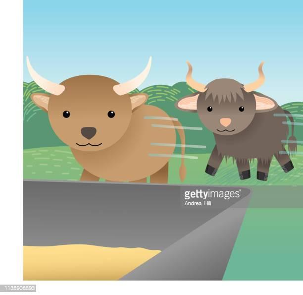livestock run to their food - european bison stock illustrations, clip art, cartoons, & icons