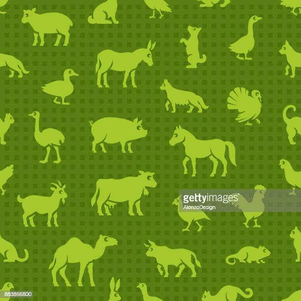 livestock seamless pattern - quail bird stock illustrations, clip art, cartoons, & icons