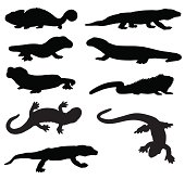 Lizard and newt silhouettes