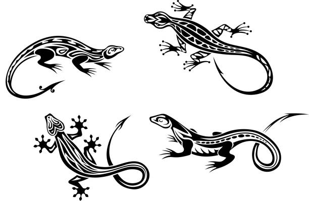 Free lizard stock photos and royalty free images, page 2