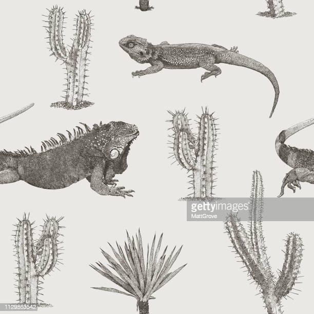 ilustraciones, imágenes clip art, dibujos animados e iconos de stock de lagartos y cactus palmeras sin fisuras repetición patrón - iguana