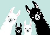 Llama Alpaca. The klan card. Family illustration, vector - Vector