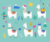 Llama collection, cute hand drawn illustration and design for nursery design, poster, greeting card
