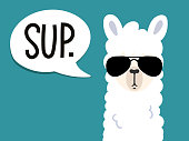 """Llama poster with inscription """"sup"""" means """"what's up"""". Simple alpaca head with sunglasses on blue background. Vector illustration with llama for poster, case, textile, invitation etc."""