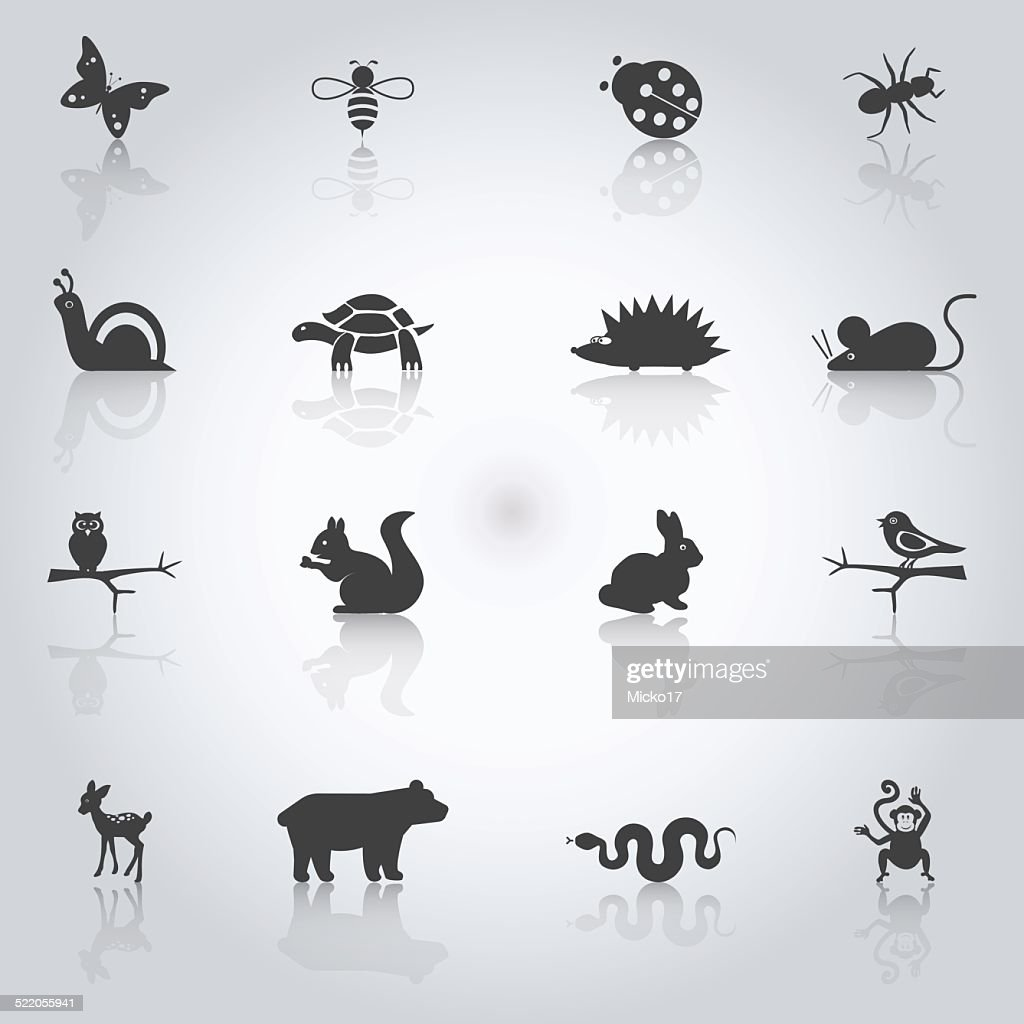 llustrations of animals