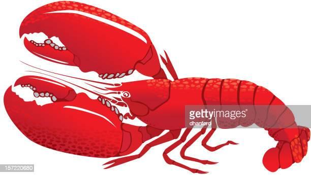 ilustraciones, imágenes clip art, dibujos animados e iconos de stock de lobsters con ganchos amplio y detallado. - al vapor