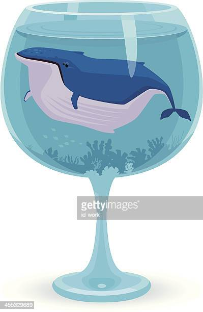lonely whale in glass - humpback whale stock illustrations, clip art, cartoons, & icons