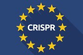 Long shadow EU flag with  the clustered regularly interspaced short palindromic repeats acromym CRISPR