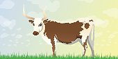 Longhorn Cow Background