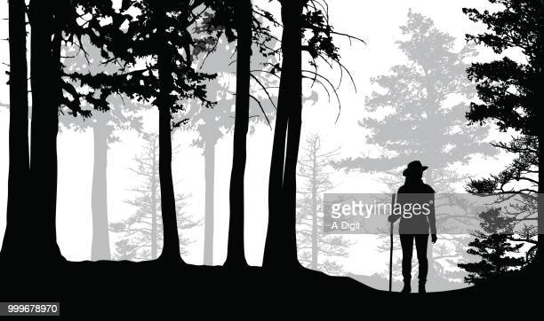 lost hiker in the woods - one young woman only stock illustrations