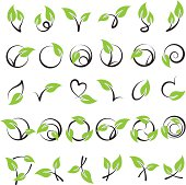 Lots of rows of various leaves for design