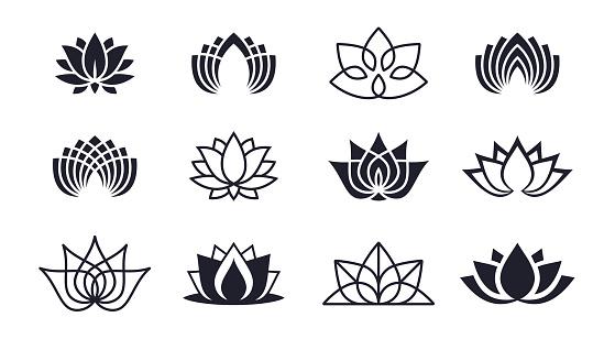 Lotus Blossoms - gettyimageskorea