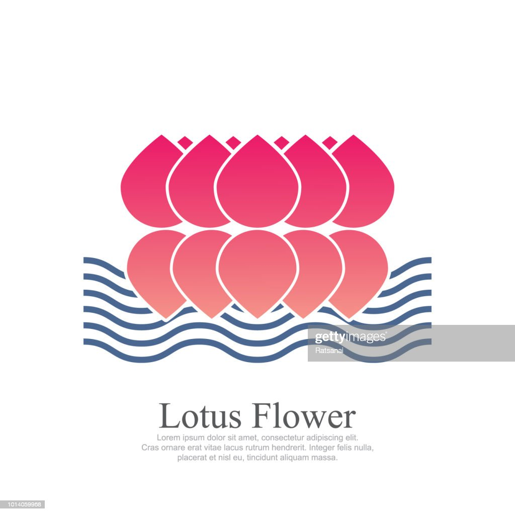 Lotus Flower Vector Art Getty Images