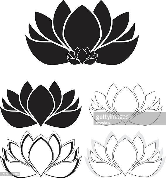 Lotus Flowers, Water Lilies Set