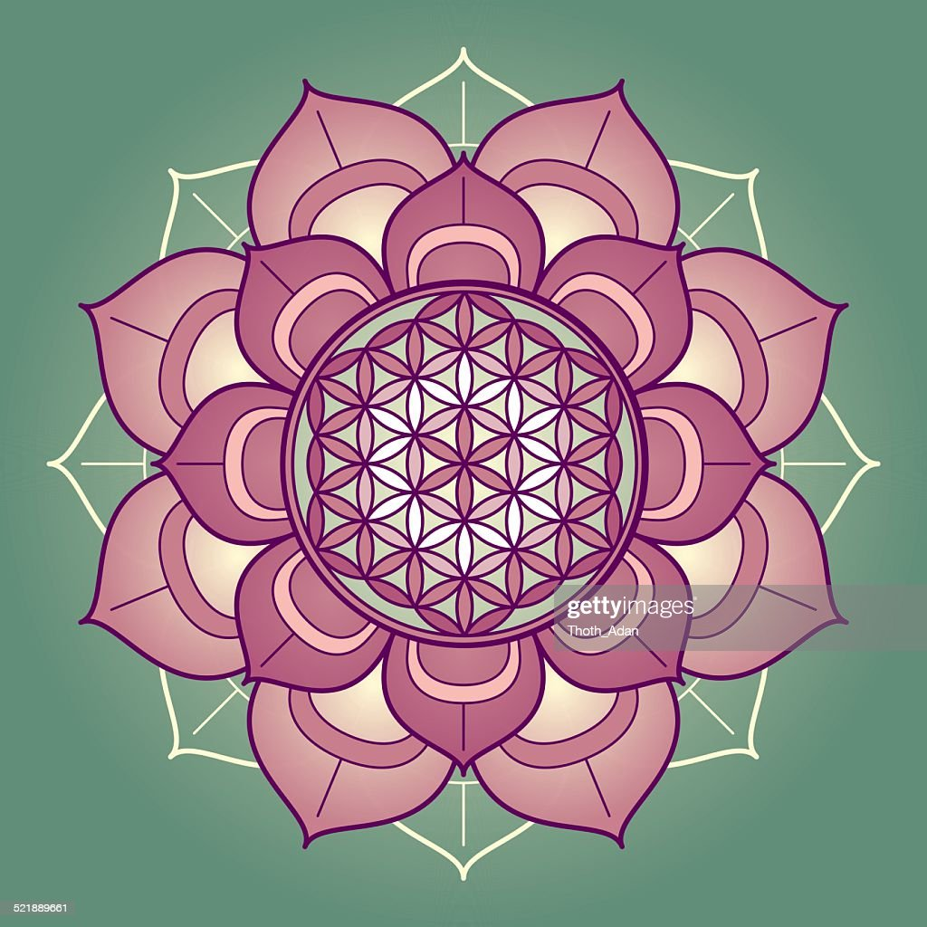 Lotus Mandala With Flower Of Life Vector Art Getty Images