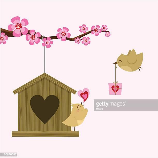ilustraciones, imágenes clip art, dibujos animados e iconos de stock de love pájaro. st. tarjeta del día de san valentín. feliz birthday. sakura - carta de amor