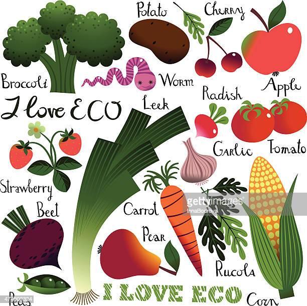 i love eco. fruit  and vegetables. - arugula stock illustrations, clip art, cartoons, & icons