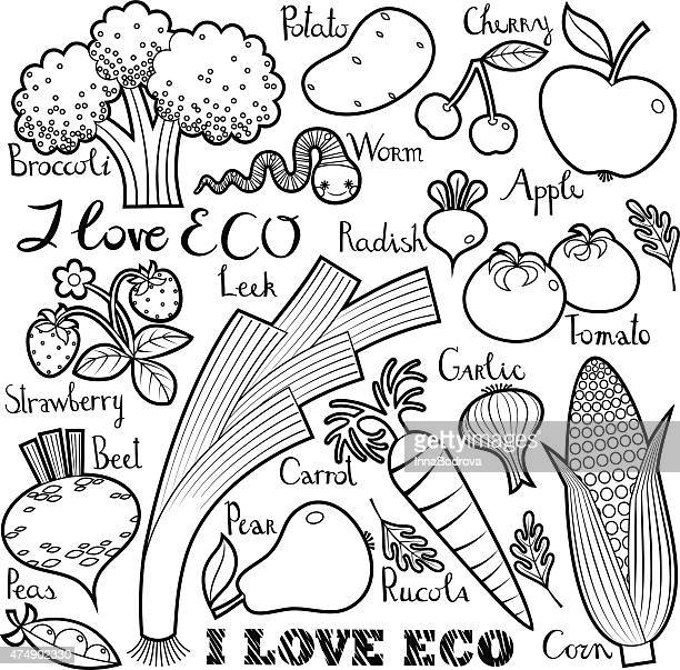 i love eco. fruit  and vegetables with lettering - arugula stock illustrations, clip art, cartoons, & icons
