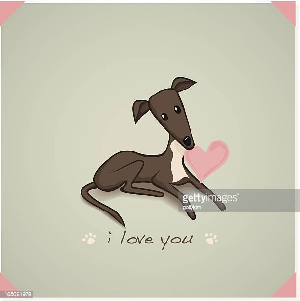 ilustraciones, imágenes clip art, dibujos animados e iconos de stock de i love you de greyhound - galgo