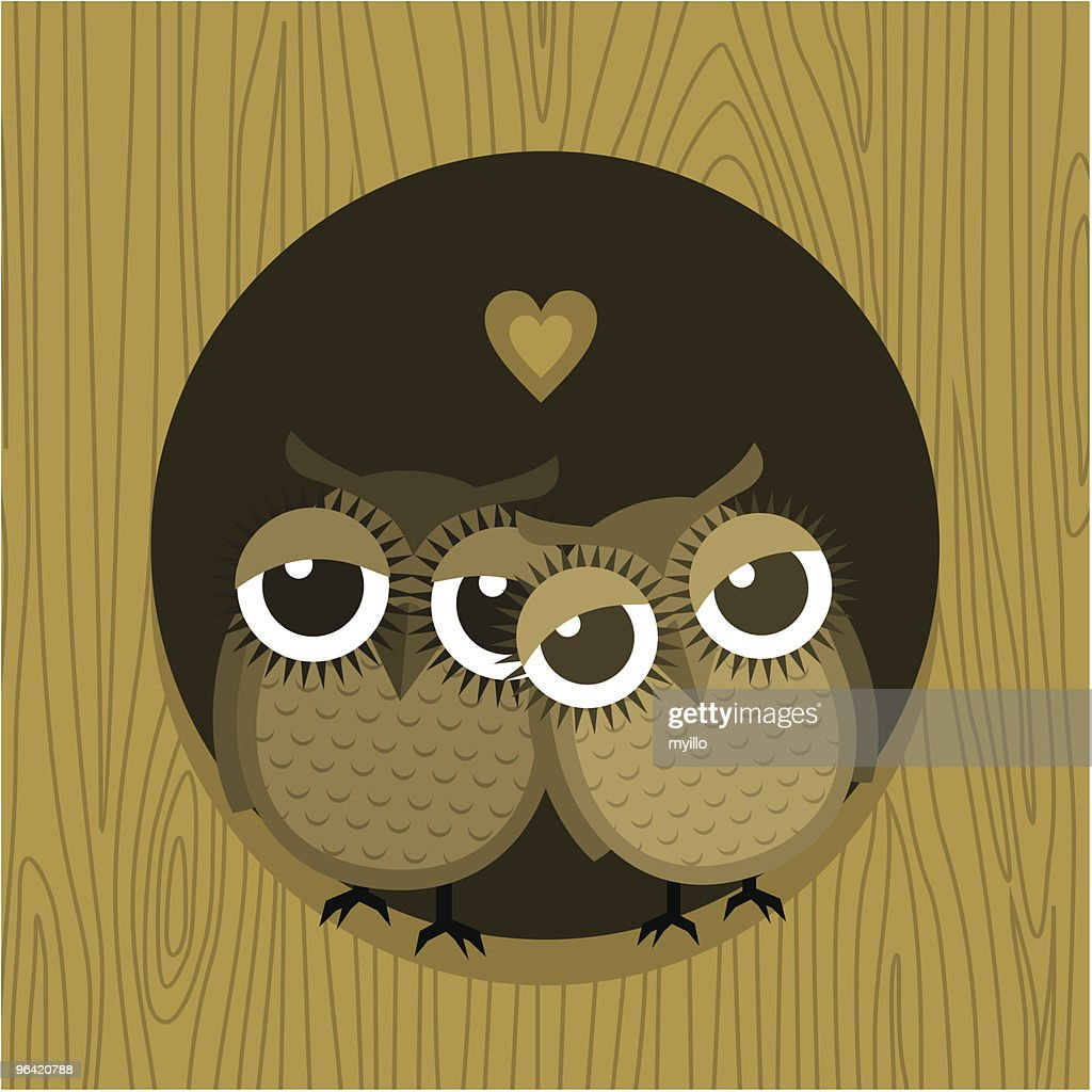 I love you owlways... Valentines card