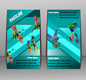 Low poly of hummingbird flyers brochure, booklet,geometric style, design templates with gray background,Abstract vector.