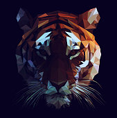 Low Poly Tiger