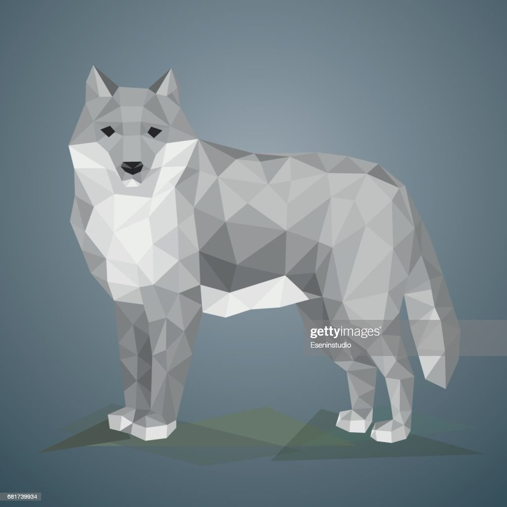 Low poly wolf. Vector illustration in polygonal style.